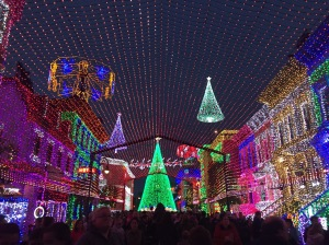 The Osborne Family Spectacle of Dancing Lights took my breath away.